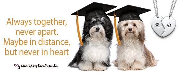 5 Graduation Gift Ideas for Friends